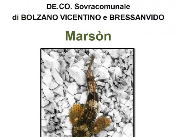 DE.CO. Marson